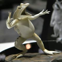 飛蛙超人カエルーン