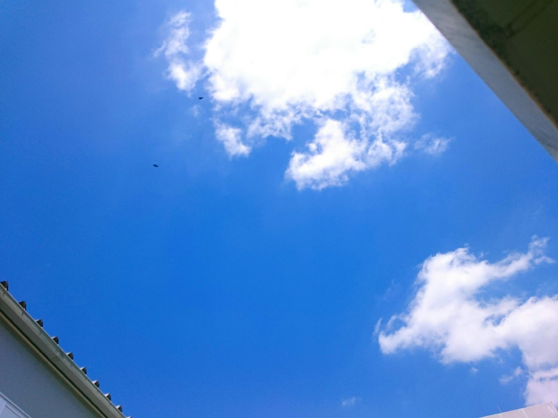 乃木坂46.755スレ★8 [無断転載禁止]©2ch.net->画像>462枚