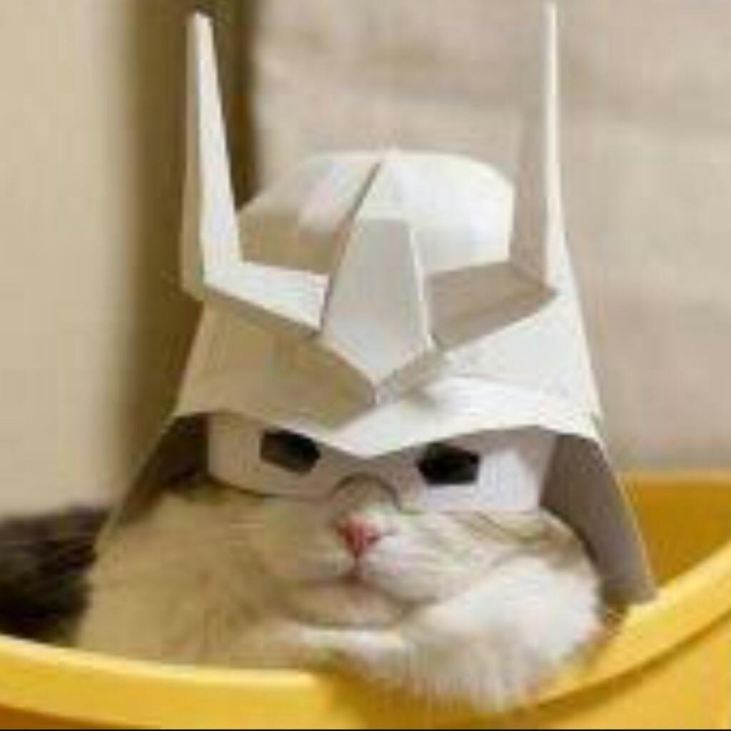 ネコはち大佐😼